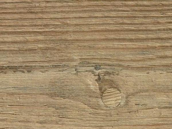 Eurowood laminatboden advanced tauern kiefer